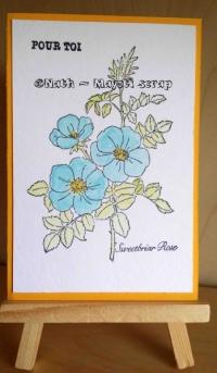 Carte - Fleurs et Neocolor