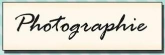 Tampon Photographie